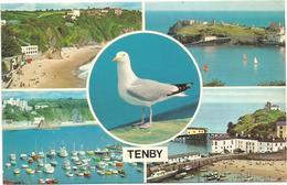 W4378 Galles - Tenby - Multiview / Non Viaggiata - Pembrokeshire