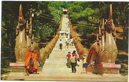 W4381 Main Stair To Climb On The Phura - Thai Doi Suthep Mountain In Chiengmai / Non Viaggiata - Tailandia