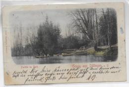 AK 0306  Gruss Aus Dillingen - Partie Im Park / Verlag Behringer Um 1900 - Dillingen