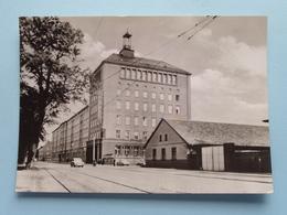 """HOG """" Baltic """" ( Vorkoper ) Anno 1970 ( Voir / Zie Photo ) ! - Stralsund"""