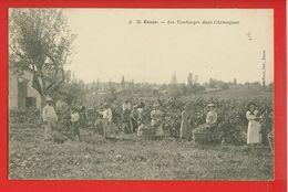 32-039 - GERS - EAUZE - Les Vendanges Dans L'Armagnac - Andere Gemeenten