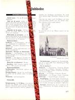 Gemeente Jabbeke - Org. Knipsel Uit Magazine 1958 - Geschiedenis - Folklore - Nijverheid - Handel - Non Classificati
