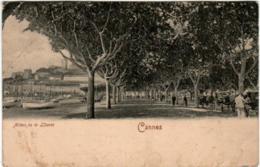 51et 842 CPA - CANNES ALLEES DE LA LIBERTE - Cannes