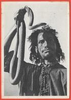 CPA Maroc CHARMEUR De SERPENTS ** Serpent Snake Phila Pub Publicité Médicale IONYL - Marruecos