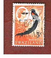 SWAZILAND     -  SG 136 -   1968  BIRDS: EUPLECTES PROGNE (OVERPRINTED 3 C)     -   USED ° - Swaziland (1968-...)