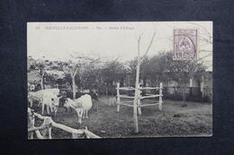 NOUVELLE CALÉDONIE - Carte Postale - Taa - Station D'élevage - L 40981 - New Caledonia