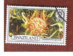 SWAZILAND     -  SG 348 -   1980  FLOWERS: Leucospermum Gerrardii   -   USED ° - Swaziland (1968-...)