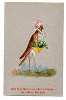 RARE Chromo Anglaise Victorian Trade Card Anthropomorphisme Oiseau Humanisé Carte De Voeux Ménagère Panier Légume Bonnet - Chromos