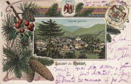 Old Postcard Salutari Din Rucar Litho - Romania