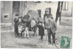 Cpa...Lacaune-les-Bains....types Lacaunais....animée...ane ...1913... - Autres Communes