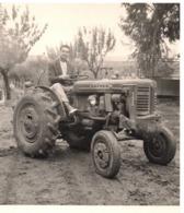 Algerie 1958 Ferme Des Issers  Tracteur UTILITY Photo 8.5x9.2cm - Lieux