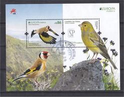 Aves Portugal Madeira EUROPA 2019 Birds Oiseaux Goldfinch Pintassilgo Canário Terra Carduelis Serinus Canaria Usado - Vögel