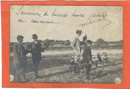 Aisne, St Quentin : Cours De Fauconnerie... Carte-Photo, RARE...( Postée A St Quentin, Voir Scan...) - France