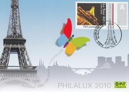 CM OBLIT. ILLUSTRÉE TOUR EIFFEL - LUXEMBOURG - SALON AUTOMNE PARIS 11/2009 - Cartes Maximum