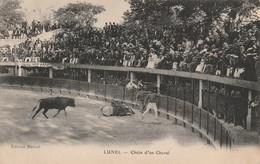 34/ Lunel Chute D'un Cheval (arène) - Lunel