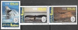 Maldive Islands  1994  Sc#1957, 1958c-d Whales  MNH - Whales
