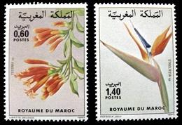 (015) Morocco / Maroc   Flowers / Fleurs / Blumen / Bloemen / Flora  ** / Mnh  Michel 1027-28 - Marruecos (1956-...)