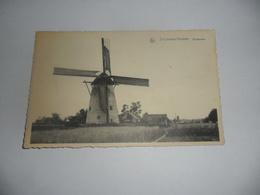 Sint Lievens-houtem Windmolen - Sint-Lievens-Houtem