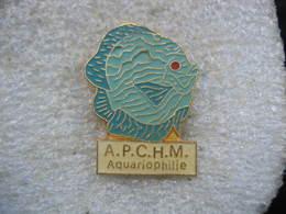 Pin's A.P.C.H.M  Aquariophilie (Amicale Du Personnel Du Centre Hospitalier De Mauvezin (gers)). Poissons - Animals