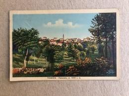TONEZZA PANORAMA  1937 - Vicenza
