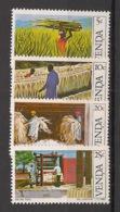 Venda - 1982 - N°Yv. 54 à 57 - Agriculture / Sisal - Neuf Luxe ** / MNH / Postfrisch - Venda