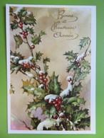 Carte Postale Bonne Année - Branches De Houx Fleuris Sous La Neige - Nouvel An