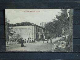 Z27 - 09 - Durban - Avenue De Labastide - Edition Fauré - France