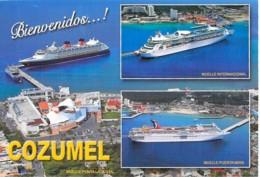 PAQUEBOTS Liner Cruise (Carnival - Royal Caribbean) En Escale à COZUMEL (Mexique Mexico ) CPM GF Ship Kreuzfahrtschiff - Steamers