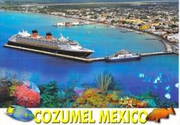 """PAQUEBOT Liner Cruise """" DISNEY CRUISE LINE """" En Escale à COZUMEL (Mexique Mexico ) CPM GF - Ship Kreuzfahrtschiff - Steamers"""