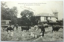 PÂTURAGE DE LA GRANDE FERME DE LA PRAIRIE - E . LEVANNEUR Á CROISSY - Croissy-sur-Seine
