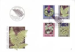 Svizzera 1993 - FDC Pro Juventute, Ghirlanda Natalizia E Piante Di Bosco - Storia Postale