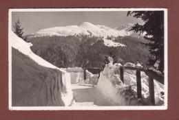 DAVOS - Im Schatzalpwaldweg - GR Grisons