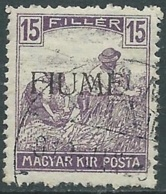 1918-19 FIUME USATO MIETITORI E VEDUTA 15 F SOPRASTAMPA A MACCHINA - UR29-5 - 8. Besetzung 1. WK
