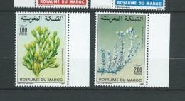 Maroc - Yvert N° 1031 / 1032  **    ( 2 Timbres )    -    Aab 23708 - Marruecos (1956-...)