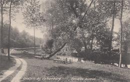 Geulem Bij Valkenburg - Verliefde Boomen - Valkenburg