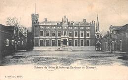 Château De Eelen - Environs De Maeseyck - Elen - Dilsen-Stokkem