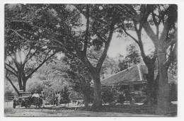 Sigiriya Rest House, Ceylon - Sri Lanka (Ceylon)