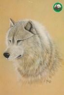 Wolf - Wolves - Loup - Lupo - Lobo - Animal - Animaux - Fauna - Faune - WWF Panda Logo - Autres