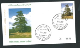 Fdc Maroc Yvert N° 1303 , Obli 1er Jour Meknes 29/03/2002     -   Aoa 19402 - Marruecos (1956-...)
