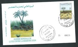 Fdc Maroc Yvert N° 1294 , Obli 1er Jour Meknes 29/10/2001     -   Aoa 19407 - Marruecos (1956-...)