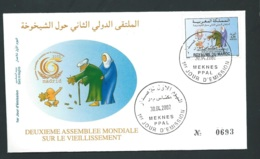 Fdc Maroc Yvert N° 1305 , Obli 1er Jour Meknes  30/04/2002  -   Aoa 19409 - Marruecos (1956-...)