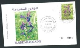 Fdc Maroc Yvert N° 1306 , Obli 1er Jour Meknes  05/06/2002  -   Aoa 19412 - Marruecos (1956-...)
