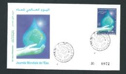 Fdc Maroc Yvert N° 1277 , Obli 1er Jour Meknes  30/03/2001 -   Aoa 19413 - Marruecos (1956-...)