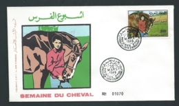 Fdc Maroc Yvert N° 1049 OBLITERE 1er Jour Meknes 20/03/1988- Aoa19425 - Marruecos (1956-...)