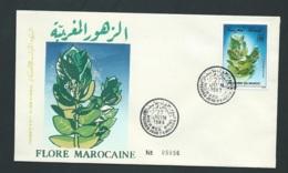 Fdc Maroc Yvert N° 1052 OBLITERE 1er Jour Meknes 27/06/1988- Aoa19427 - Marruecos (1956-...)