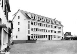BOURBRIAC - Nouveau C.E.G. Filles - Architecte Mr Quittançon - Tirage D'éditeur N&B Non Dentelé - Andere Gemeenten