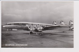 Vintage Pc KLM K.L.M Royal Dutch Airlines Constellation L-1049 Aircraft @ Schiphol Amsterdam Airport Number C - 1919-1938: Between Wars