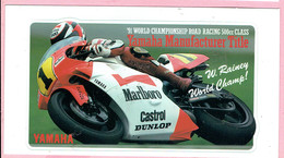 Sticker - 1991 World Championship Road Racing 500cc Class - Marlboro - W.Rainey World Champ! - Castrol - Dunlop - Stickers