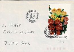 TP N° 2910 Seul Sur Enveloppe De St Jean Le Thomas - 1961-....