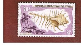 TERRITORI FRANCESI AFARS & ISSAS (FRENCH TERRITORY AFARS & ISSAS) - SG 632 - 1975 SHELLS: MUREX SCOLOPAX      - USED ° - Afars & Issas (1967-1977)